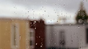 20120410-rainy-DSC_5338