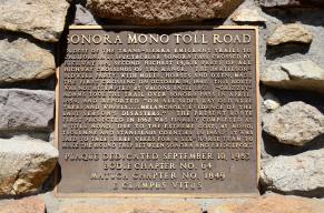 Roadside on Sonora Pass
