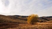 Los Vaqueros Reservoir, Brentwood, CA