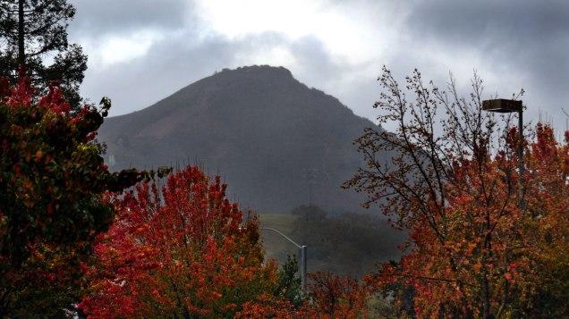 Morgan Hill Rainy Day