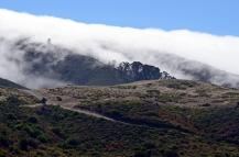 Fog over Sweeney Ridge