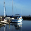 Harbors reflect